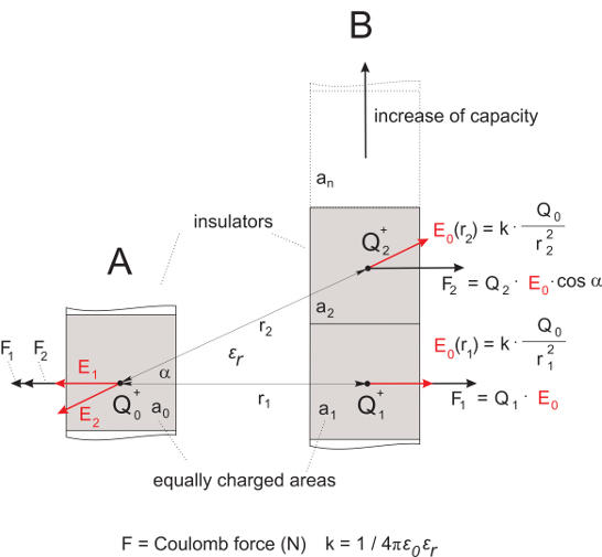 Reception And Learning Of Electric Fields Menzel Group