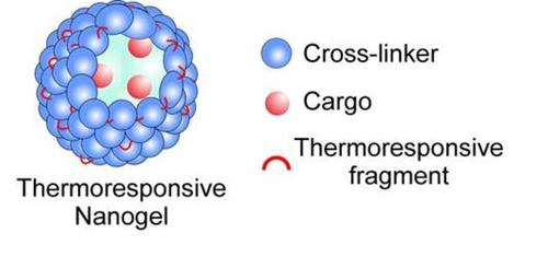 Thermoresponsive nanogels