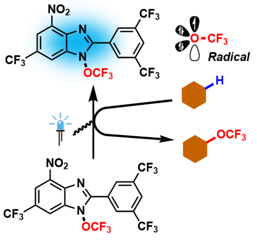 A Radical Revolution for Trifluoromethoxylation