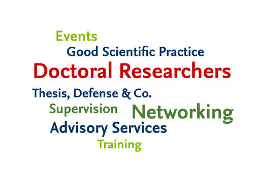 Doctoral Researchers